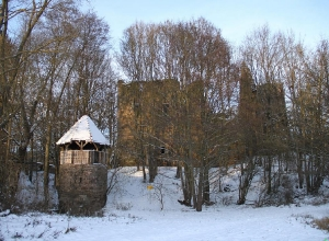 Burgruine im Winter_1