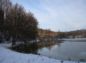 Burgruine im Winter_5