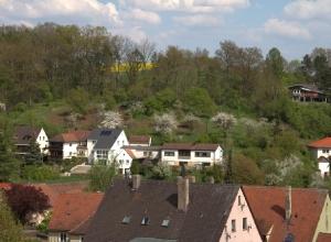 Dietenhofen von oben_73