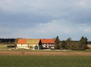 Walburgswinden