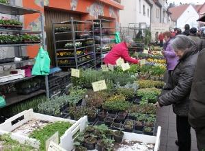 Frühjahrsmarkt 2013_6